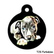 Blue Pitbull Puppy-W/ Personalized Back Pet ID Tag for Dog Collars & Harnesses
