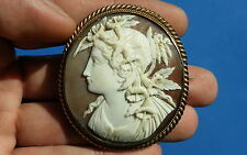 Antiguo de exquisita Victoriano Camafeo Retrato Broche Loza Shell Natural 1875