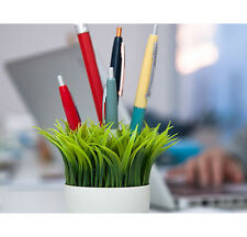 Kikkerland Grass Potted Pen Stand (SC24) pen holder cup desk organizer