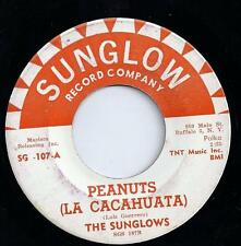 Sunglows - Peanuts (USA 1965)  Tex-Mex Polka