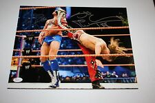 WWE LEGENDS RIC FLAIR & SHAWN MICHAELS DUAL SIGNED AUTO 11X14 PHOTO RETIREMENT