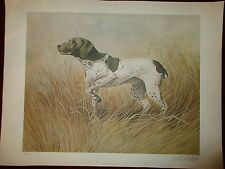 Robert White Large German Setter Signed Print Lithograph 186 of 600 Hunting Dog