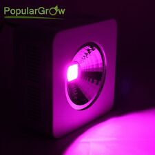 Populargrow 200W COB Reflector LED Pflanzenlampe für Pflanze Seeding Flowering