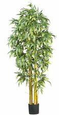 Nearly Natural 5194 Curved Slim Bamboo Silk Tree- 7-Feet- Green NEW