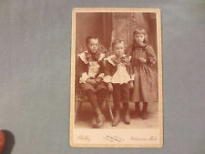 "2 DARLING BOYS DELIGHTFULLY DRESSED AS  ""LITTLE LORD FAUNTLEROY"" KALAMAZOO 1890"