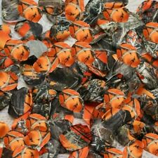 500 Orange Camo Rose Petals - Camo Wedding - Flower Girl Petal - Country Wedding
