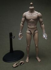 1/6 Scale Hot Toys TrueType Figure TTM-19 Muscular Body w/ Stand  Set
