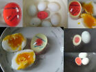 Popular Egg Perfect Color Changing Timer Yolk Soft Hard Boiled Eggs Cook Kitchen
