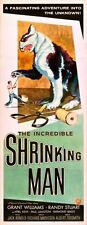 Incredible Shrinking Man The 14x36 Insert Movie Poster Replica