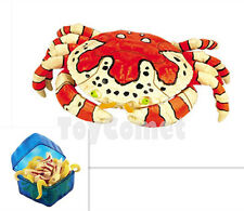 Clown Crab Sea Creatures Animal Part I 4D 3D Puzzle Model Kit Toy