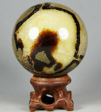 230g Polished DRAGON SEPTARIAN sphere Crystal w/Rosewood Stand Madagascar