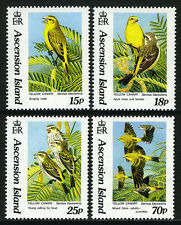 Ascension 553-556, MNH. Birds. Yellow Canary, 1993