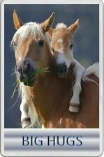 BIG HUGS Valentine Mothers Day FRIDGE MAGNET horse and baby foal Lush picture