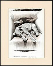 ENGLISH BULL & DANDIE DINMONT TERRIER CHARMING DOG PRINT MOUNTED READY TO FRAME