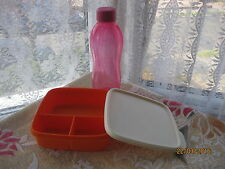 Tupperware Fun Meal Box, Divided Lunch and 500 ml bottle   set F