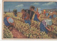 Meursault Pays du Vin Blanc Vendange A La Hotte France Vintage Art Postcard 318a