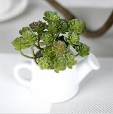 Fake Artificial Office Mini Foliage Succulents Landscape Cactus