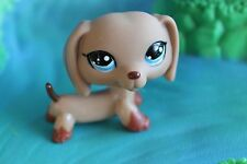 Littlest Pet Shop  Sonderfigur   1211