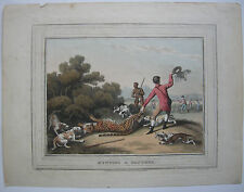 Hunting a Panther KOLOR ORIG litografico Dubourg Howitt Panther caccia 1850
