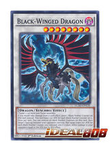 YUGIOH x 3 Black-Winged Dragon - LC5D-EN135 - Common - 1st Edition Near Mint