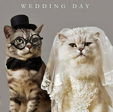 Wedding Day Greeting Card Bride & Groom Cats Congratulations On Your Wedding Day