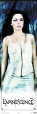 EVANESCENCE ~ AMY LEE DOOR SIZE 21x62 MUSIC POSTER NEW/ROLLED!