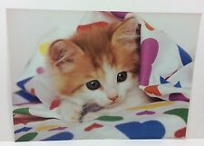 Cool Kitten Kitty Under Covers New Old Stock 1993 Scholastic Bedroom Poster