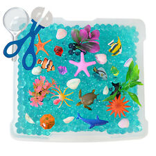 Discovery Box for Sensory Play: Ocean Exploration