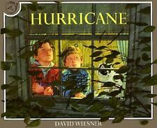 Hurricane by James S. Hirsch and David Wiesner (1992, Paperback)
