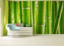 GIANT Wall Mural Photo Wallpaper BAMBOO TREES FOREST Living Room Decor 360x254cm