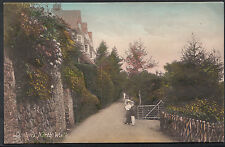 Devon Postcard - Lynton, North Walk   DR777