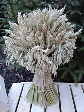 Dried Flowers Bouquet Wheat & Oat Large Sheaf Harvest Wedding Country Natural