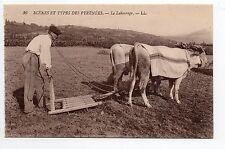 AGRICULTURE CAMPAGNE scenes et types des pyrenées  labourage attelage de boeufs