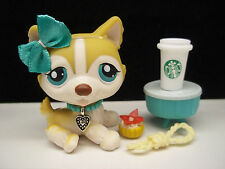 LITTLEST PET SHOP CUTE TAN CREAM HUSKY DOG #386 BOW STARBUCKS ACCESSORIES