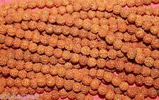 Rudraksha Rudraksh 5 Mukhi Loose 7mm Beads Yoga Meditation Wholesale Lot of 54