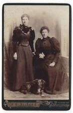 CABINET CARD Photograph Victorian Ladies with Pet Dog by Ireland of Anstruther
