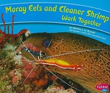 Moray Eels and Cleaner Shrimp Work Together (Pebble Plus: Animals Working Togeth