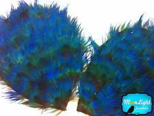1 Piece - Iridescent Blue Peacock Plumage Feather Pad
