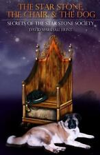The Star Stone, the Chair, and the Dog : Book 1: Secrets of the Star Stone...