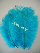 """10 TURQUOISE OSTRICH FEATHERS 10-12""""L"""