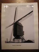 Photo noir et blanc MOULIN à vent de Flandre belge :  AARTSELAAR - années 1950