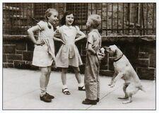 Postkarte in schwarz-weiß: ein Hund klaut Eis - the winning dog