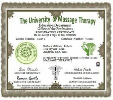 Barbie Furniture 1:6 Scale Dollhouse Miniature Massage Therapy License