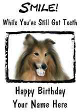 Collie Dog Happy Birthday Card Smile Teeth 26 A5 Personalised Greetings