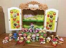 VINTAGE STRAWBERRY SHORTCAKE BERRY PATCH DISPLAY CASE W/25 MINIATURES KENNER