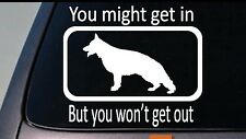 "YOU MIGHT GET IN BUT YOU WON'T GET OUT- German Shepherd Dog 6"" Decal Sticker Gsd"