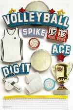 PAPER HOUSE 3-D GLITTER STICKERS - TROPHY SPIKE DIG IT BALL SPORT - VOLLEYBALL