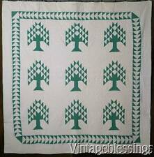 Excellent Vintage 1930s Green White Pine Tree of Life QUILT Goose Chase Border