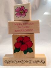 Inkadinkado Hibiscus Happy Birthday to a Very Special Person border Rubber Stamp