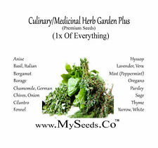 CULINARY MEDICINAL Herb Garden Seeds Kit - 16 Easy-to-Grow Herbs Anise to Yarrow